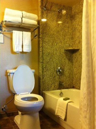 Embassy Suites by Hilton Brea - North Orange County: Nice, clean bathroom