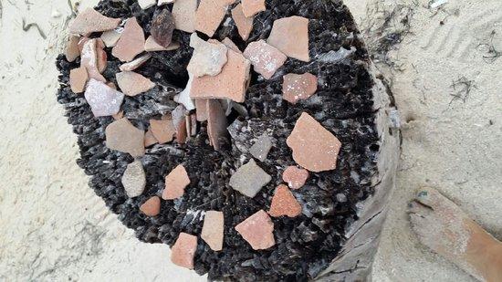 Sin Duda Villas: Mayan pottery shards found in the sand