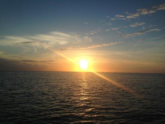 Good Times Catamaran Cruises : the sunset