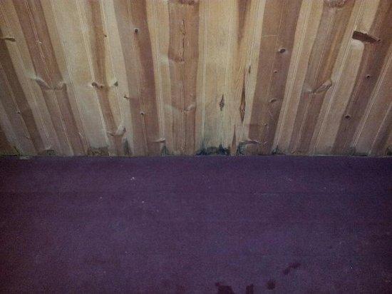Smoky Mountain Lodging Mold On Walls Around Hot Tub