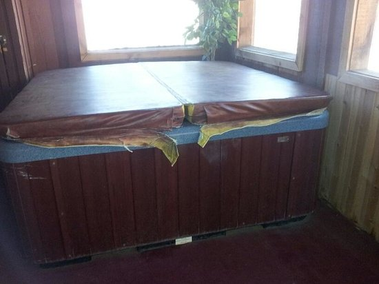 Smoky Mountain Lodging: mold under and aroun hot tub, and worn out cover