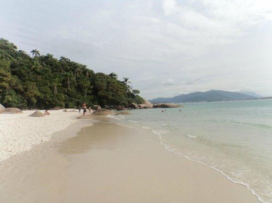 Campeche island: Ilha Campeche