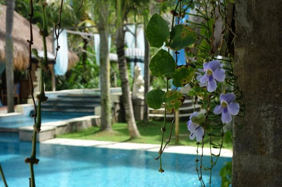 The Mansion Resort Hotel & Spa: pool