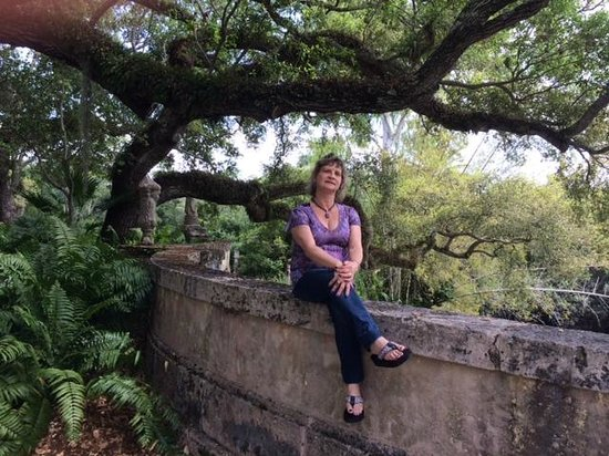 Vizcaya Museum and Gardens : Beautiful wife and foliage