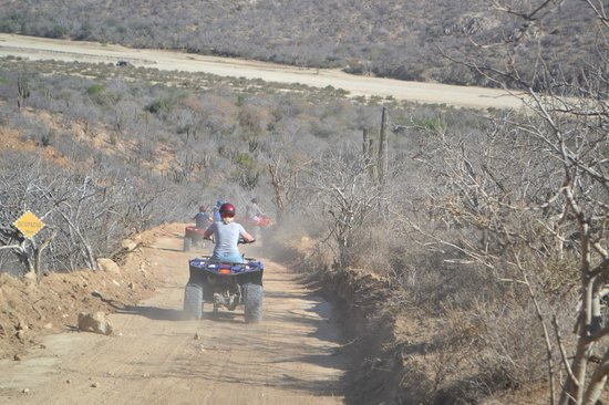 Cabo San Lucas Tours: ATVs in Cabo