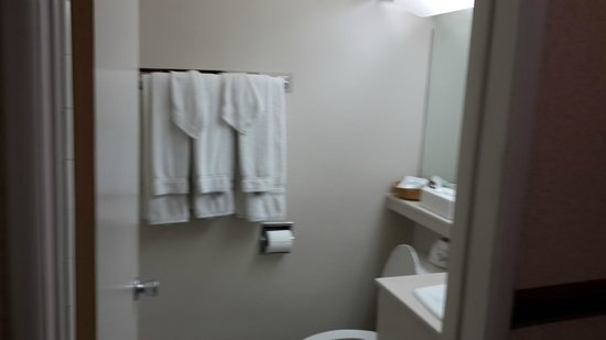 Travelodge Hotel at LAX: Bathroom