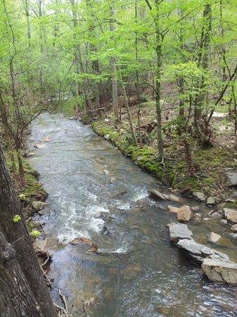 Chewacla State Park: Chewacla Creek