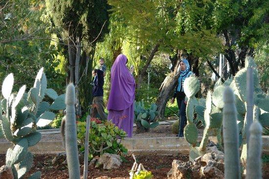 Jardin Jnan Sbil : Ikke bare turister tager fotos