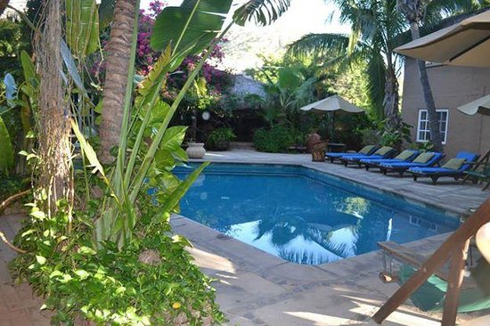 The Bungalows Hotel: The pool :)