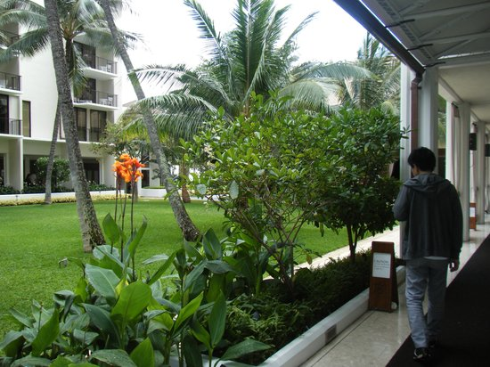 Halekulani Hotel: お部屋までの通路
