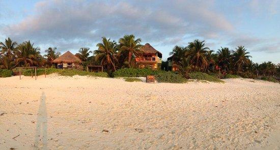 Nueva Vida de Ramiro : view of northern end of property from beach