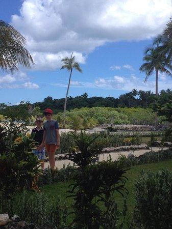 Aquana Beach Resort: Aquana man made groins and coconut groves