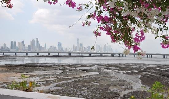 Panama Marriott Hotel : Panama City Skyline from Old Town