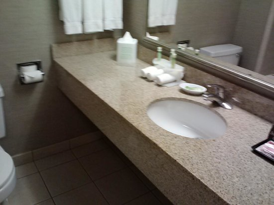 Holiday Inn Express Nashville Downtown Conference Center : sink