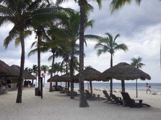 Chankanaab Beach Adventure Park: Beach and chairs