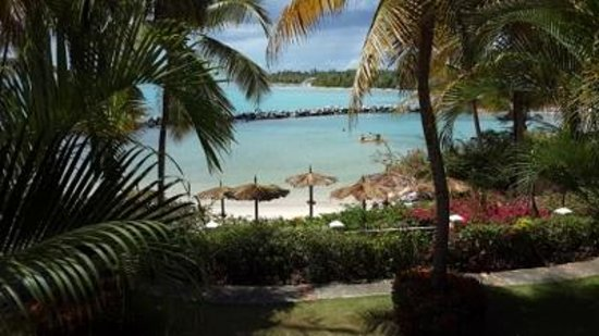 Coco Reef Resort & Spa Tobago: View from room