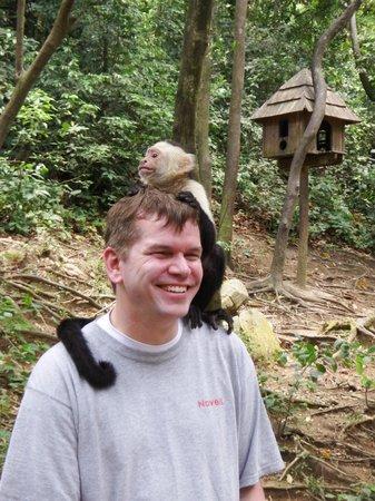 Gumbalimba Park : Monkeys!