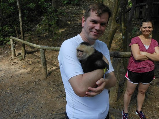 Gumbalimba Park : Cuddly monkey (named Diego, it turns out)