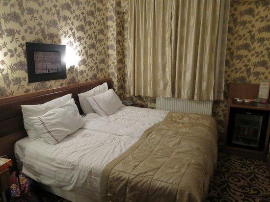 The Q-Inn Hotel Istanbul: ダブルベット