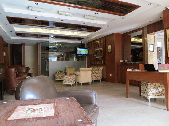 The Q-Inn Hotel Istanbul : ロビー