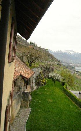 Domaine du Burignon : Terrace garden view from window