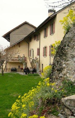 Domaine du Burignon: Terrace garden