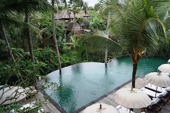 Komaneka at Rasa Sayang: hotel pool