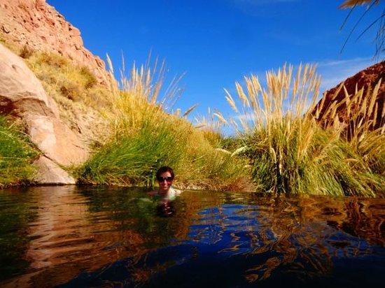 Termas Banos de Puritama : Vista de uma das piscinas