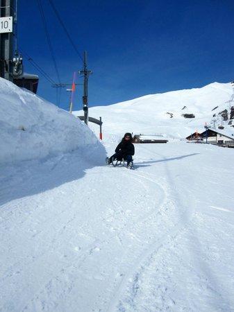 sledding to Brandegg from Kleine Scheidegg