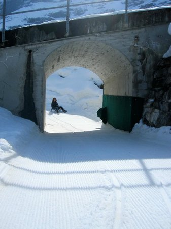 Kleine Scheidegg: The sled route to Brandegg