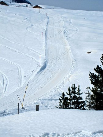 Kleine Scheidegg: cautious curves and the straight and fast