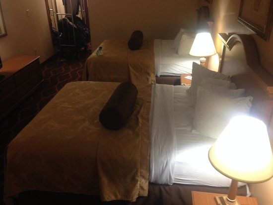 Quality Inn & Suites Huntsville: guest room