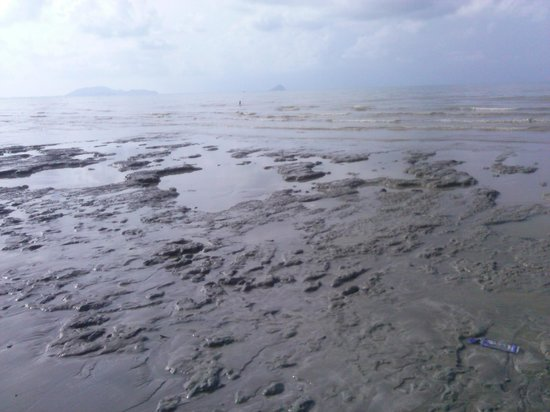 Baan Faa Talaychan: the beach is like a mud swamp