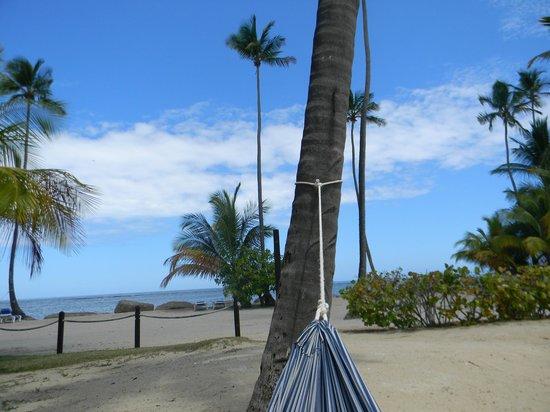 Gran Melia Golf Resort Puerto Rico : Hammock