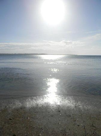 Melia Coco Beach: Ocean