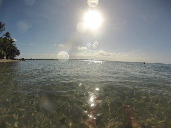 Melia Coco Beach: Morning ocean view