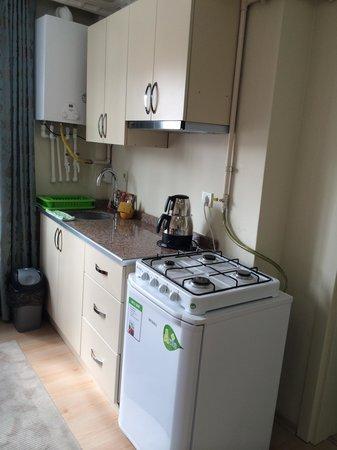 Q Hotel Istanbul: Kitchen