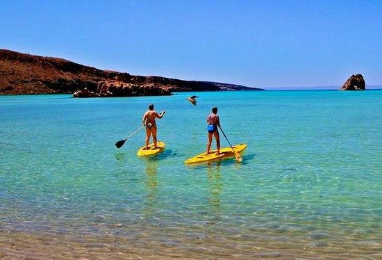 Hacienda Paraiso de La Paz Bed and Breakfast/Inn: Paddle boarding was amazing!