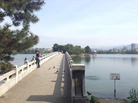 Ohori Park: 大きな池を囲んだ公園で、池の真ん中に橋がかかっています