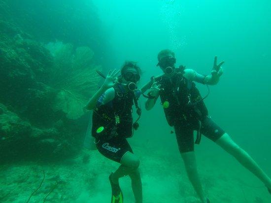 Kiwidiver Dive Centre: underwater
