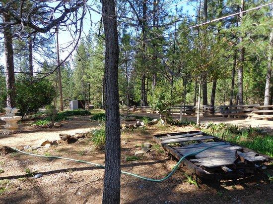 Rock Creek Inn: grounds