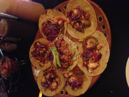 Langosteria Maya Restaurant: octopus tacos & shark tostada
