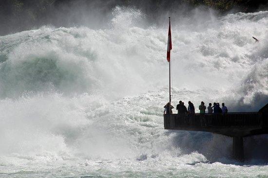 Rhine Falls : Rheinfall - Plattform Fischetz