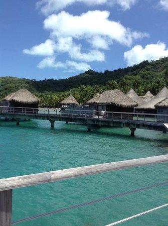 Sofitel Bora Bora Marara Beach Resort: Hillside view