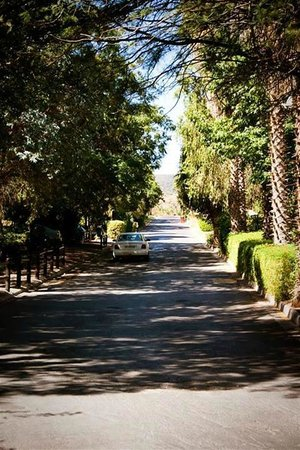 Montagu Springs Resort: The road infront of the Josmont Heights