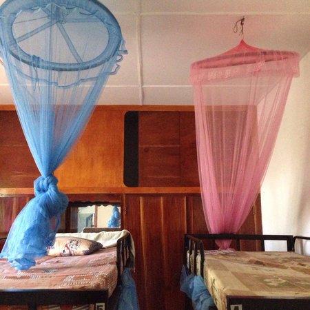 Hikka Train Hostel @ Surf Beach : Woman dorm