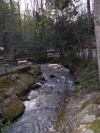 Moonshine Creek Campground: This is the side view of our site