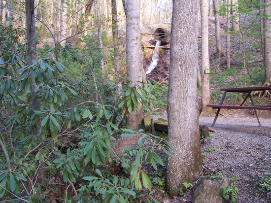 """Moonshine Creek Campground: This is the """"waterfall"""""""