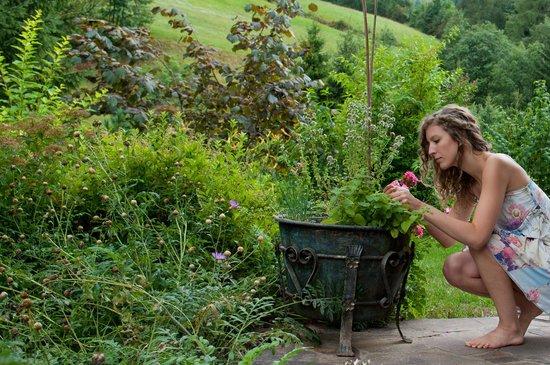 Landhaus Mauerwirt: Alpin-Kräutertopf auf Ihrer Terrasse