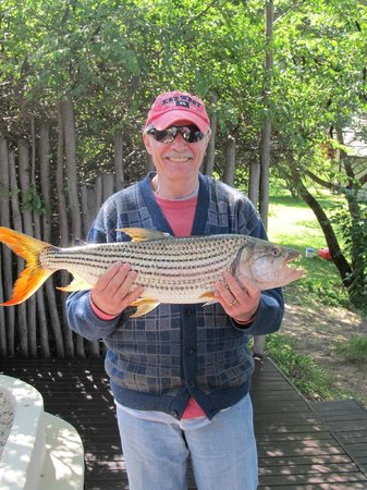 Shackletons: 4.5kg Tiger fish.